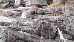 Wässern Sie die Kaskade über Felsen, Wasserfall und Herbstfarben in den Berg-, Gelben und Rotenbäumen stock footage