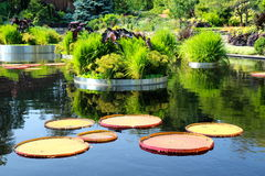 Wässern Sie Garten stockbilder