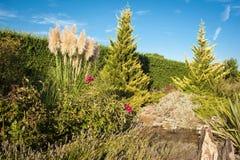 Wässern Sie Garten Stockbild
