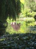 Wässern Sie Garten lizenzfreie stockfotografie