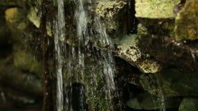 Wässern Sie im kleinen Gebirgsstrom, der schnell hinunter Felsen, malerischer Wasserfall fließt stock footage