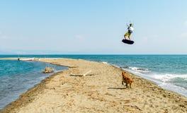 Wässern Sie Spaß und das Kiteboarding auf Ada Bojana, Montenegro, mit einem Hund Stockfotos