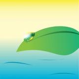 Wässern Sie Tropfen auf einem Blatt auf Seehintergrund, Vektor Stockfotografie