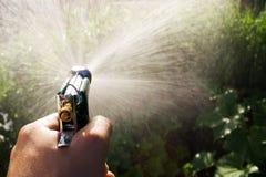Wässerngarten Lizenzfreies Stockbild