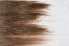 Włosiany kłaść na białym ręczniku z wzorem dla projektować twój włosy zdjęcia stock