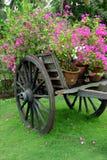 wózek kwiaty Zdjęcia Royalty Free
