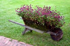 wózek kwiaty obrazy royalty free