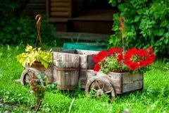 wózek kwiaty Zdjęcie Royalty Free