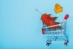 Wózek na zakupy na błękitnym tle z kopii przestrzenią obrazy stock