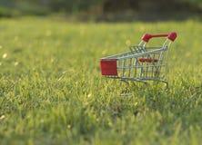 Wózek na zakupy na trawie w wieczór Zdjęcia Royalty Free