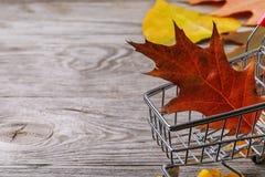 Wózek na zakupy z liśćmi na drewnianej deski i kopii przestrzeni obrazy stock