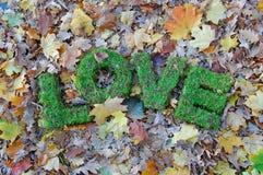 Wörter LIEBE auf Herbsthintergrund Lizenzfreie Stockbilder