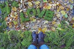 Wörter LIEBE auf Herbsthintergrund Stockbild