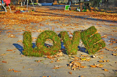 Wörter LIEBE auf Herbsthintergrund Stockfotos