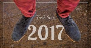 2017 Wünsche des neuen Jahres gegen Veloursleder chukka Stiefel Stockbild