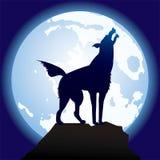 Würdevoll-schwarz-Wolf vektor abbildung