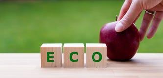Würfel bilden das Wort 'ECO ' lizenzfreies stockfoto