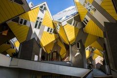 Würfel bringt Rotterdam unter Stockfotografie
