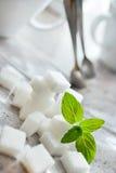 Würfel des raffinierten Zuckers mit frischer Minze Stockbilder