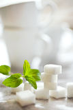 Würfel des raffinierten Zuckers mit frischer Minze Lizenzfreie Stockbilder
