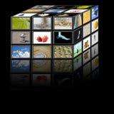 Würfel Fernsehapparat Stockfoto