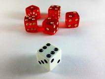 Würfel-mehrfaches rotes einzelnes Weiß Lizenzfreies Stockbild