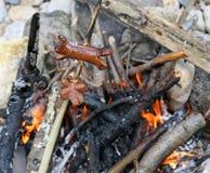 Würste kochten im Feuer während eines Picknicks im Freien Lizenzfreies Stockbild