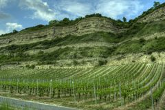Würzburg, Germany - Vineyard rockface Stock Images