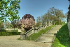 Würzburg Tyskland - trädgård av den Würzburg uppehållet Arkivbilder