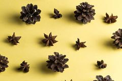 Würze und Carminatives Traditionelle chinesische Medizin stockfotos
