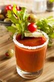 Würzige blutige Mary Alcoholic Drink Lizenzfreie Stockfotografie