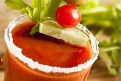Würzige blutige Mary Alcoholic Drink Lizenzfreies Stockbild