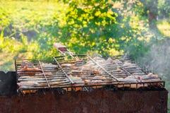 Würzige Hühnerflügel Lizenzfreies Stockfoto