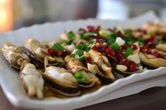 Würzige Muscheln mit Paprika, Meeresfrüchteteller der chinesischen Art, chinesische Nahrung lizenzfreies stockbild