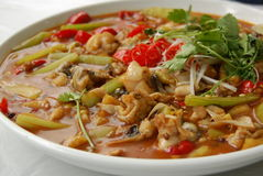 Würzige Nahrung (Chuancai) stockfotografie
