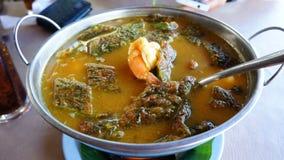 Würzige Suppe lizenzfreies stockbild
