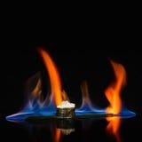 Würzige Sushi mit Feuer auf reflektierender Oberfläche Stockbilder
