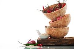 Würziger Asiat, der Bestandteile kocht Stockbild