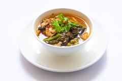Würziger Curry der thailändischen Fische mit weißem bolw Stockfotos