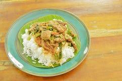 Würziger gebratener Entenfleischcurry mit Basilikumblatt und Reis auf frischer Banane treibt Blätter Lizenzfreies Stockfoto