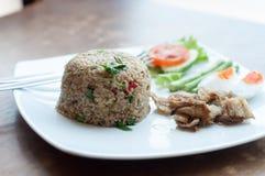 Würziger gebratener Reis mit gebratenen Fischen mit gesalzenem Ei lizenzfreie stockbilder