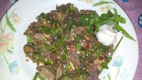 Würziger Salat des Rindfleisches Stockfotos