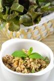 Würziger Schweinefleisch-Salat Stockbild
