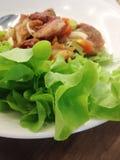 Würziger Schweinefleischsalat mit Gemüse stockbild
