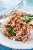 Würziges angebratenes Schweinefleisch mit Reis Stockbild