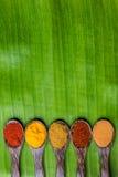 Würziges Curry-Pulver Lizenzfreies Stockbild