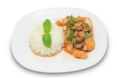 Würziges gebratenes Huhn der Mischung mit Reis Lizenzfreies Stockbild