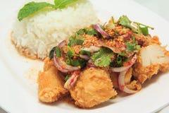 Würziges gebratenes Huhn der Mischung mit Reis Lizenzfreies Stockfoto
