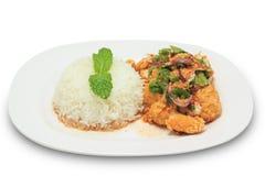 Würziges gebratenes Huhn der Mischung mit Reis Lizenzfreie Stockfotos