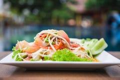 Würziges köstliches der grünen Küche des Papayasalats siamesischen Lizenzfreie Stockbilder